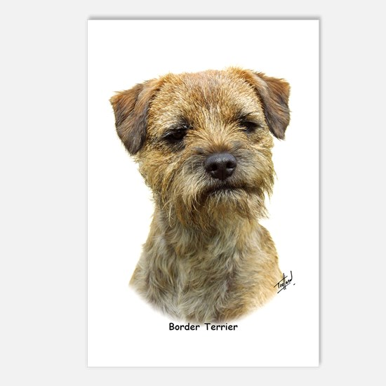 Border Terrier 9A21D-19 Postcards (Package of 8)