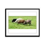 Schoonover Farm Framed Panel Print