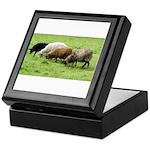 Schoonover Farm Keepsake Box