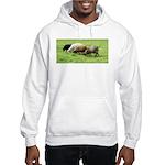 Schoonover Farm Hooded Sweatshirt