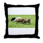 Schoonover Farm Throw Pillow