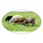Schoonover Farm Oval Sticker