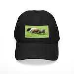 Schoonover Farm Black Cap