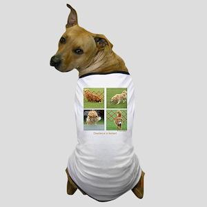 Golden Retriever Obedience Dog T-Shirt