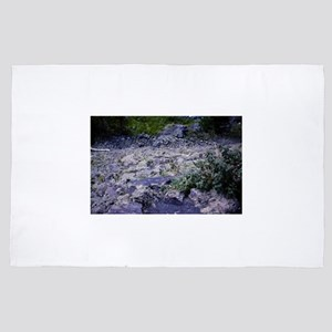 PICT0468 desert scenic 4' x 6' Rug