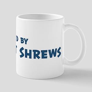 Raised by Elephant Shrews Mug