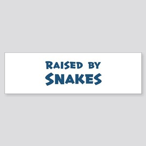 Raised by Snakes Bumper Sticker