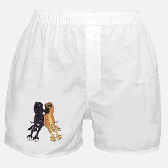 NFNBw Lean Boxer Shorts