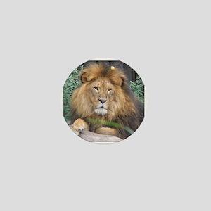 Male Lion Portrait Mini Button