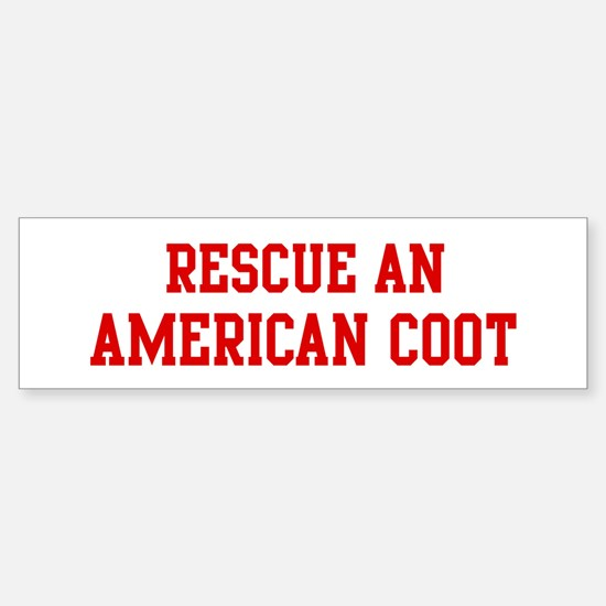 Rescue American Coot Bumper Bumper Bumper Sticker