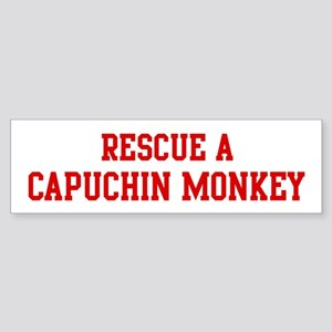 Rescue Capuchin Monkey Bumper Sticker