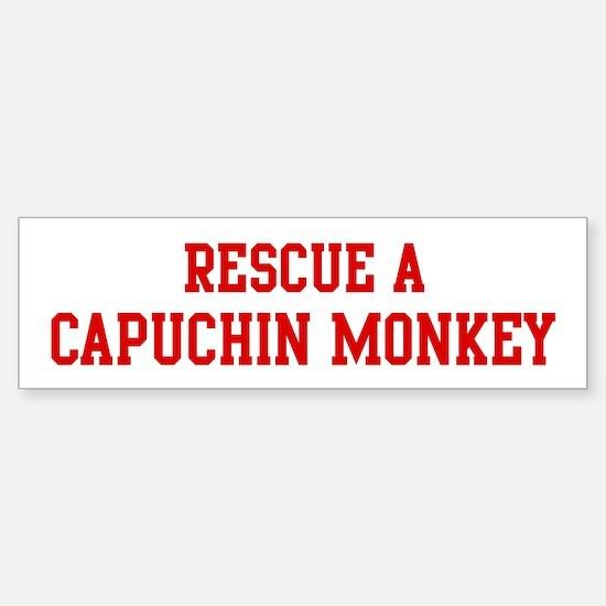 Rescue Capuchin Monkey Bumper Bumper Bumper Sticker
