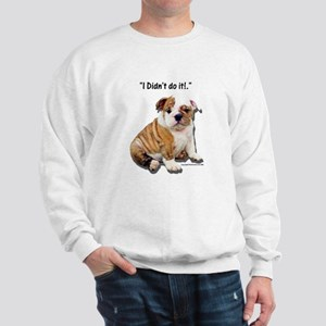 I Didn't Do It Sweatshirt