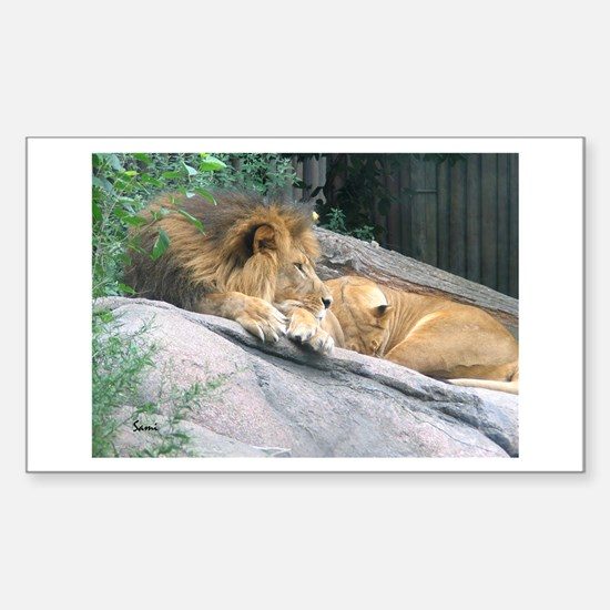Picturesque Lions Rectangle Decal