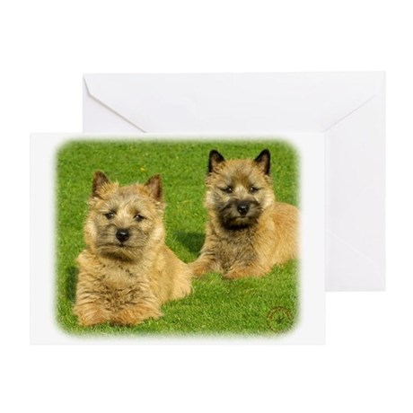 Cairn Terrier puppies 9W048D-035 Greeting Card