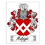 Malpighi Family Crest Small Poster