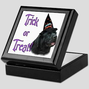 Newfie black Trick Keepsake Box