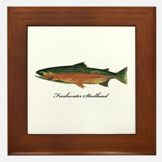 Freshwater Steelhead Trout Framed Tile