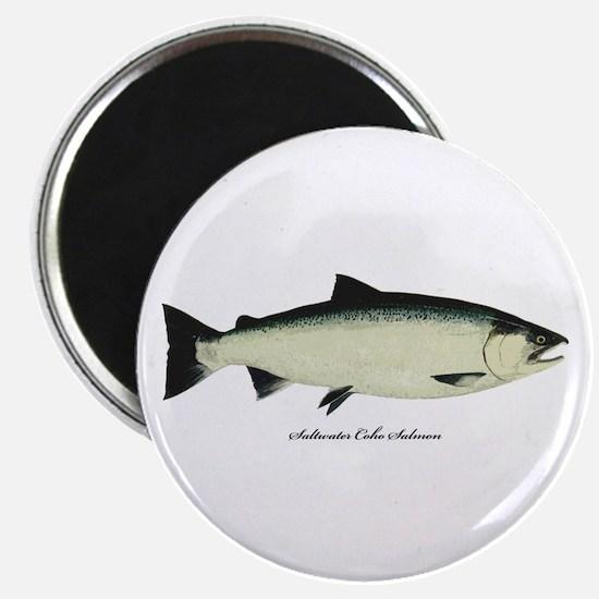 Coho Silver Salmon Magnet
