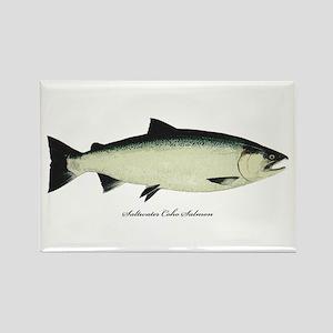 Coho Silver Salmon Rectangle Magnet