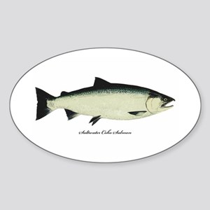 Coho Silver Salmon Oval Sticker