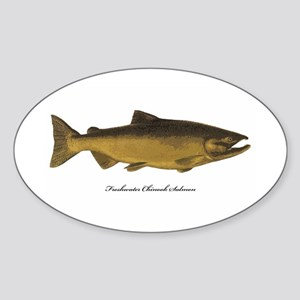 Chinook King Salmon Oval Sticker