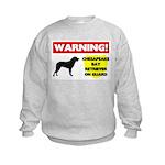 Chesapeake Bay Retriever Gift Kids Sweatshirt