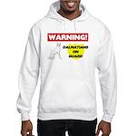 Dalmatian Gifts Hooded Sweatshirt