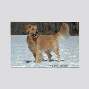 Golden in the Snow Rectangle Magnet