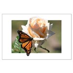 Jan's Rose & Monarch Large Poster