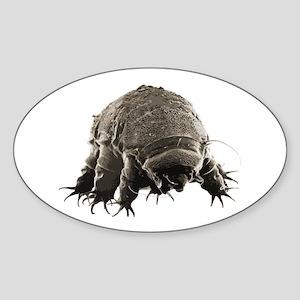 Water Bear Oval Sticker