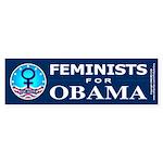 Feminists for Obama Bumper Sticker (50 pk)