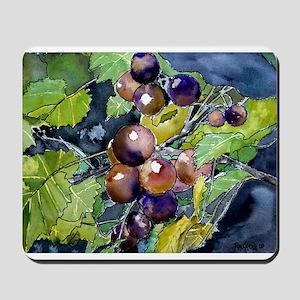 grapevine grapes fruit still Mousepad