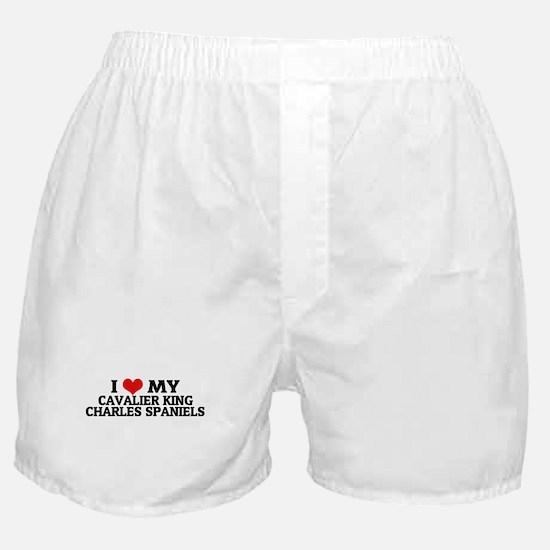 I Love My Cavalier King Charl Boxer Shorts