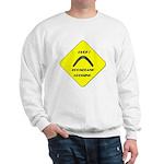 Boomerang crossing Sweatshirt