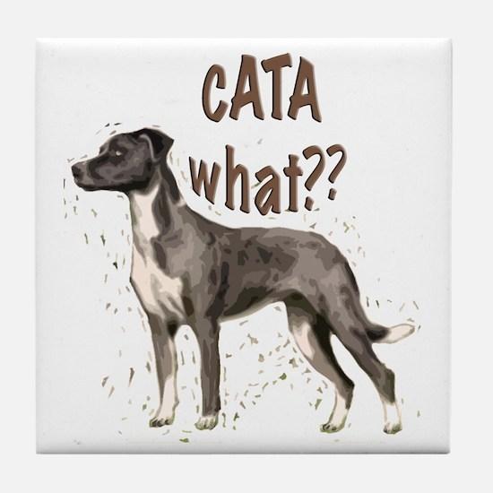CATA WHAT Tile Coaster