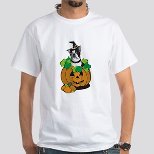 Boston in Pumpkin White T-Shirt