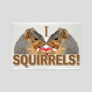 I Heart / Love Squirrels! Rectangle Magnet