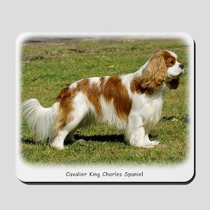 Cavalier King Charles Spaniel 9P032D-071 Mousepad