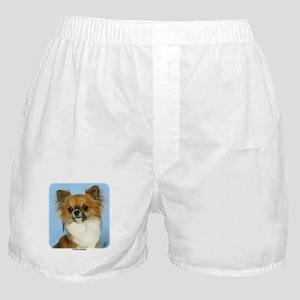 Chihuahua 9W092D-116 Boxer Shorts