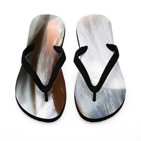 market street fountain flip flops by momentsbytrish. Black Bedroom Furniture Sets. Home Design Ideas
