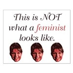 Palin: Not a Feminist Small Poster