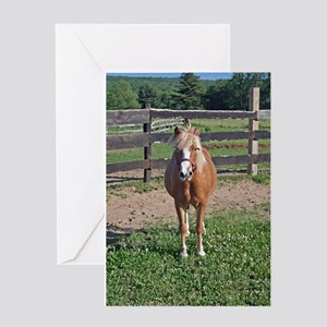 Pony Love (Brush) Greeting Card