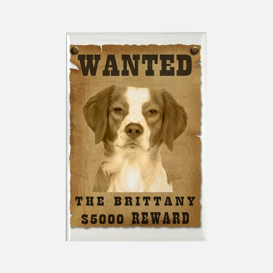 """""""Wanted"""" Brittany Rectangle Magnet (10 pack)"""