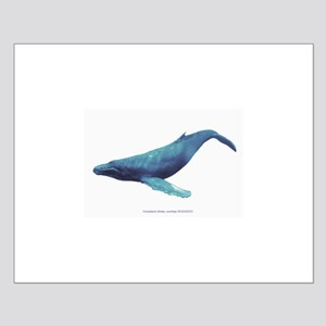 Humpback Whale Small Poster