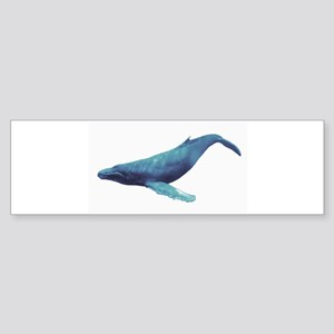 Humpback Whale Bumper Sticker