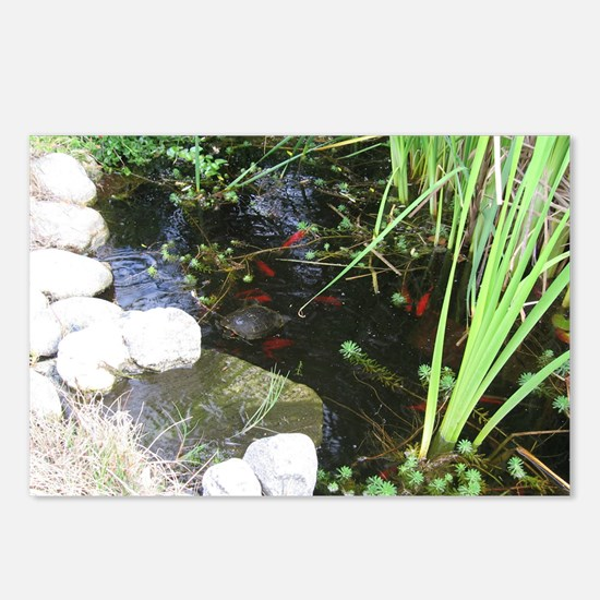 Pond, turtle, fish - Postcards (Package of 8)