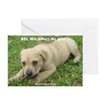 BSL Hurts Everyone Greeting Cards (Pk of 20)