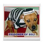Prisoner Of BSL Tile Coaster
