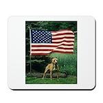 Who Salutes The American Flag Mousepad